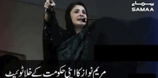 Maryam Nawaz Fake Tweets